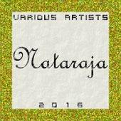 Nataraja 2016 by Various Artists