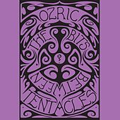 The Bits Between the Bits von Ozric Tentacles