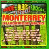 Viva Monterrey by Los Rancheritos Del Topo Chico
