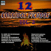 12 Corridos Picudos, Vol. 2 by Various Artists