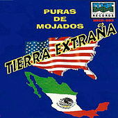Puras De Mojados - Tierra Extrana by Various Artists