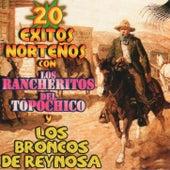 20 Exitos Nortenos by Los Rancheritos Del Topo Chico