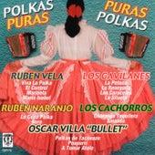 Polkas Puras, Puras Polkas by Various Artists