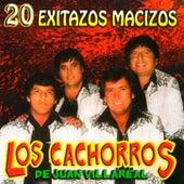 20 Exitazos Macizos by Los Cachorros de Juan Villareal