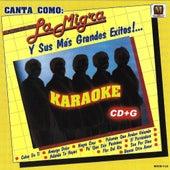 Karaoke by La Migra