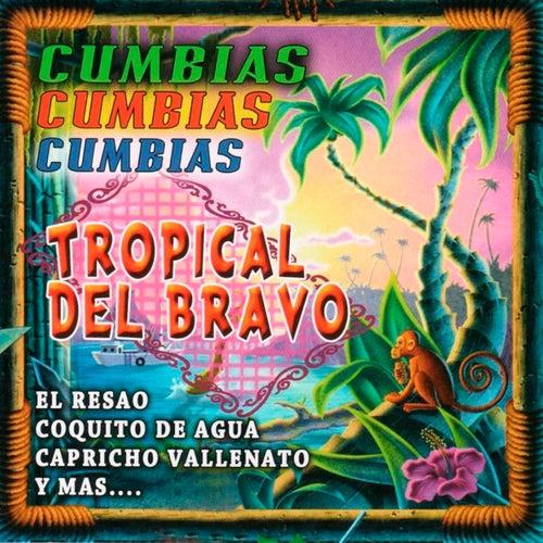 Cumbias Cumbias Cumbias by Tropical Del Bravo