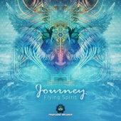 Flying Spirit by Journey