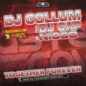 Together Forever (Easter Rave Hymn 2k16) de DJ Gollum