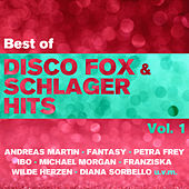Best of Disco Fox & Schlager Hits, Vol. 1 by Various Artists