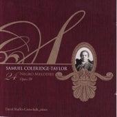Twenty-Four Negro Melodies by David Shaffer-Gottschalk