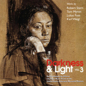 Darkness & Light, Vol. 3 by Steven Honigberg