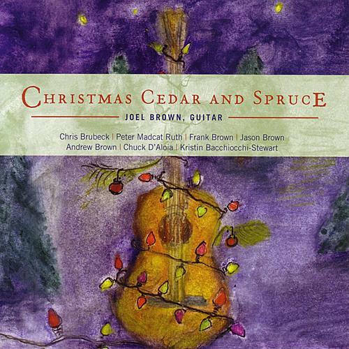 Christmas Cedar And Spruce by Joel Brown