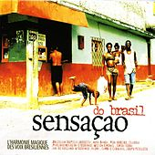 Sensacao do Brasil von Various Artists
