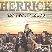 Cottonfields by Herrick