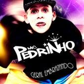 Geral Embrazando by Mc Pedrinho