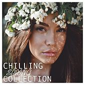 Chilling Spring Collection by Various Artists