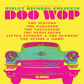 Winley Records Presents Doo Wop by Various Artists