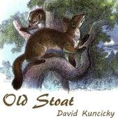 Old Stoat de David Kuncicky