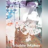 Triuble Maker (Instrumental) by Woods