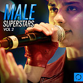 Male Superstars, Vol. 2 by Various Artists