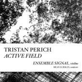 Active Field by Ensemble Signal Tristan Perich