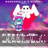 Want U 2 (Marshmello & Slushii Remix) de Marshmello