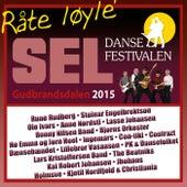 Dansefestivalen på Sel 2015 by Various Artists