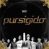 Pursigido by Quest
