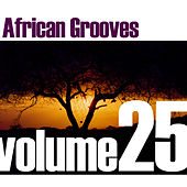 African Grooves Vol.25 by Various Artists