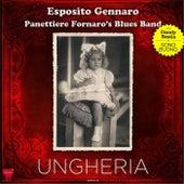 Ungheria by Esposito Gennaro Panettiere Fornaro's Blues Band