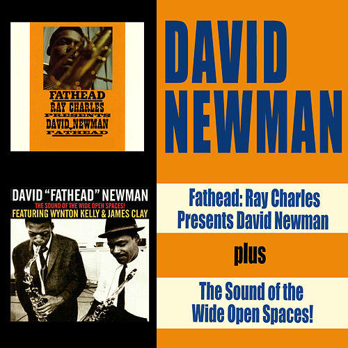Fathead: Ray Charles Presents David Newman + the Sound of the Wide Open Spaces!!!! by David 'Fathead' Newman