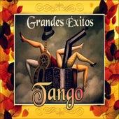 Grandes Éxitos Tango by Various Artists