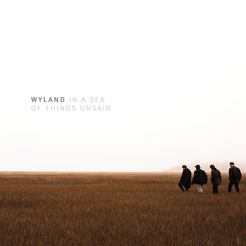 In a Sea of Things Unsaid by Wyland