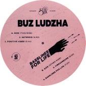 Basslines for Life by Buz Ludzha