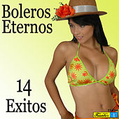 Boleros Eternos: 14 Éxitos von Various Artists