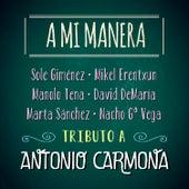 A Mi Manera. Tributo a Antonio Carmona by Various Artists