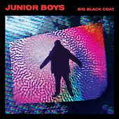 Big Black Coat (Robert Hood Remix) by Sven Väth