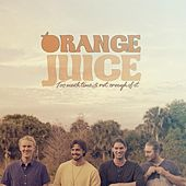 Too Much Time & Not Enough of It von Orange Juice