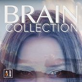 Brain Collection by Francesco Digilio