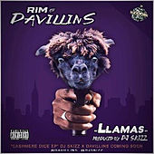 Llamas by DJ Skizz