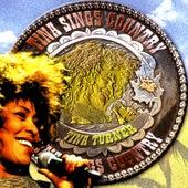 Tina Sings Country de Tina Turner
