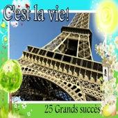 C'est la vie! - 25 Grands succès by Various Artists