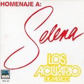 Homenaje a Selena by Los Acuario De Mexico