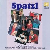 Spatzl - Tony Amberger präsentiert de Various Artists