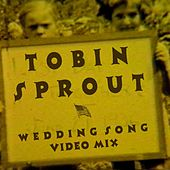 Wedding Song (Video Mix) by Tobin Sprout