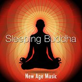 Sleeping Buddha - Discover our New Age Music to Sleep Better at Night de Various Artists