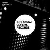 1993 (Miki Craven Remix) by Junior