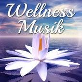 Wellness Musik: Geführte Meditation für Innere Ruhe, Yoga und Entspannung mit Naturgeräusche und Meeresrauschen von Various Artists
