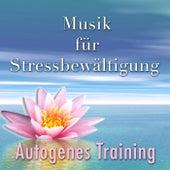 Musik für Stressbewältigung und Autogenes Training: Meditation für Anfänger, Stressabbau mit Querflöte, New Age Klaviermusik und Naturgeräusche von Various Artists