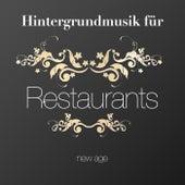 Hintergrundmusik für Restaurants oder Geschäfte: New Age Musik zu beruhigen und Entspannen die Kunden von Various Artists